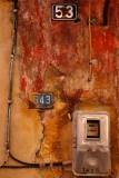 DSC04800a w.jpg