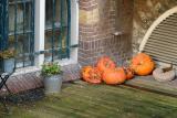 Decaying pumpkins