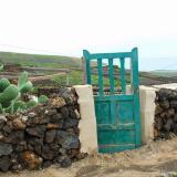 Lost green door