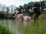 Callaway Gardens I