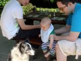 Quinn meets Lucky (the puppy)