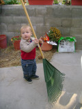 Mason wants to rake