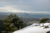 Oakland Hills Snow