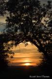 Brentwood Sunrise