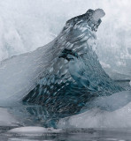 Antarctica The Land of  Ice