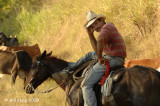 Cuban Cowboy 1