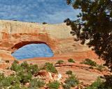 Wilsons Arch, Utah