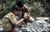 Breaking rocks in the hot sun.