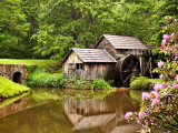 Mabry Mill In Spring