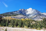Along the Bow Valley Parkway