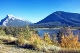 Traveling Up Bow Valley