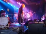 Melvins in concert