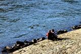 Am Rhein, am Rhein, am deutschen Rhein...