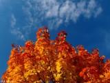 The autumn sky...