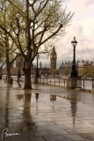 Walking on the River Thames