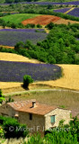 Ah!...Toujours Provence (version impressionist)