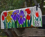 Painted _ Flowered Mailbox