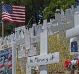 In Memory of 5050 Troops
