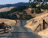 Cattle Guard Exiting Old Borges Ranch