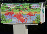 Painted_Pink Flamingos