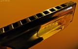 Hohner Special 20 Harp - key of E