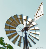 The Windmill (3 images)