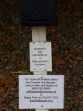 Support the Memorial Info Sign - Donation infomation