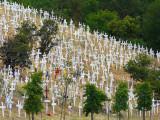 Hillside of Crosses