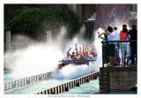 Splash, Busch garden williamsburg