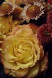 Thanksgiving Bouquet (*)