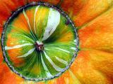 8th. Pumpkin by Anabela Gabriel-Astrom
