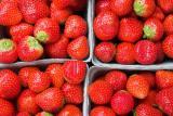 october strawberries*