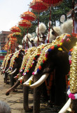 Thrissur Pooram '09