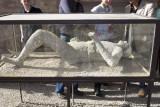 Plaster Cast of a Vesuvius Victim