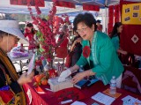 2011 Chinese New Year Fair
