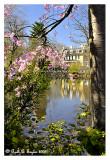 *** Spring at Lake Afton