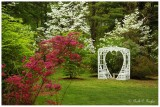 Wedding Arbor in May
