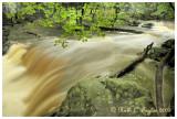 Summer Rain along High Falls Creek, Ringing Rock Park