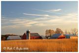 Autumn Farm in Tinicum