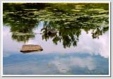 Reflections of and August Sky