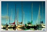 Reflections of a Marina