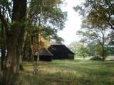 Farm between trees