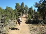 Short trail