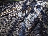 Muddy ruts