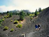 Volcanic landscape (I)