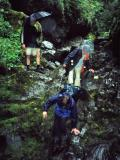 Slippery descent