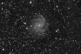 NGC-6946, the supernovae kindergarden