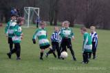 2011_01WherevogelsF8 (10).jpg