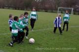 2011_01WherevogelsF8 (23).jpg