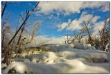 Mammoth Hot Springs 4